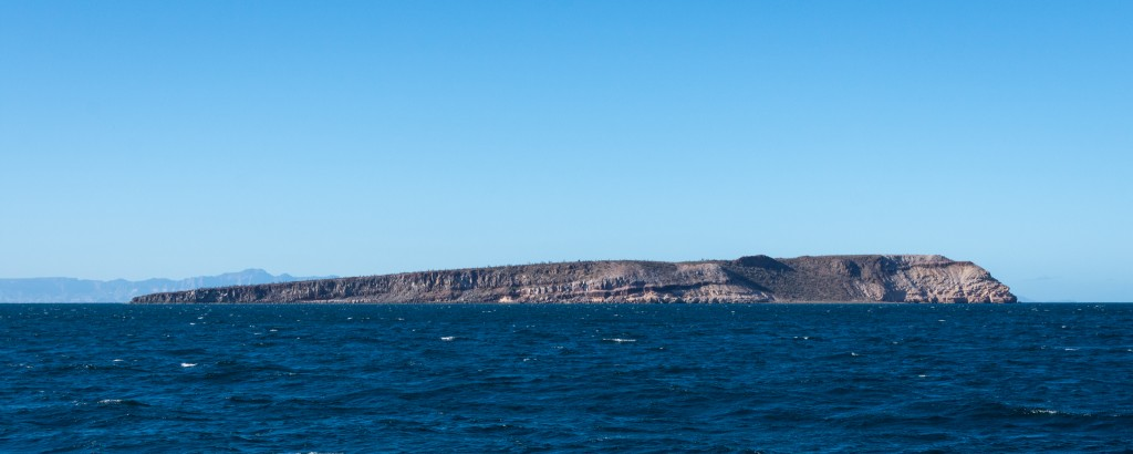The south coast of Isla Ballena